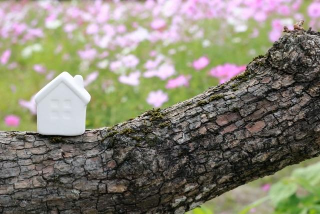 相続税の小規模宅地の特例はどんな人が対象になる?